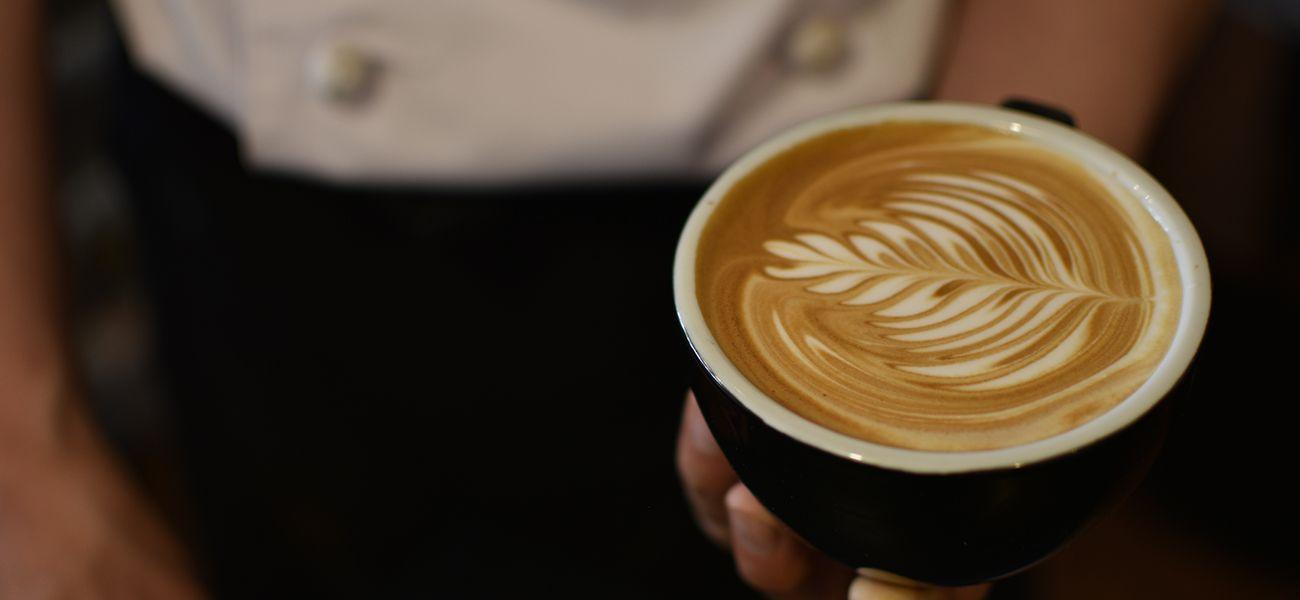 横浜市港北区スペシャルティコーヒーのボンコアン 13